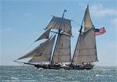 Lynx sailboat