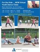 Virtual Youth Dance Class flyer
