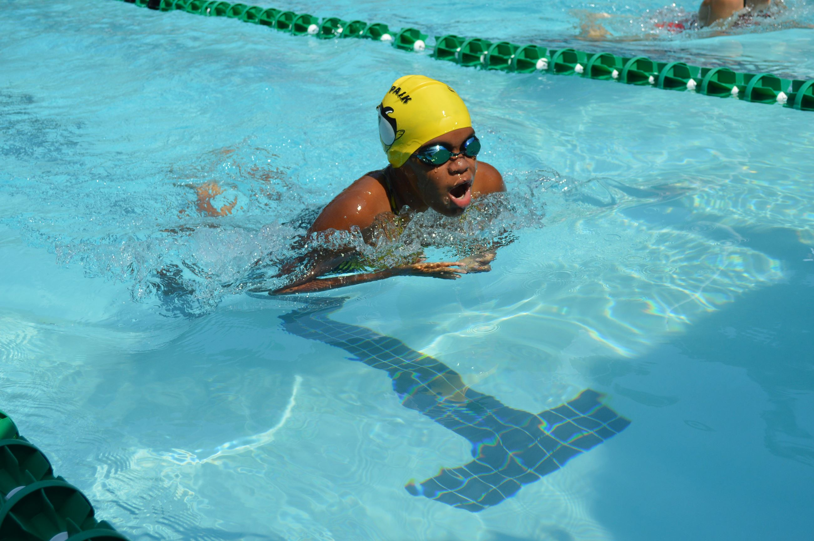 Penguins Swim Meet 072019