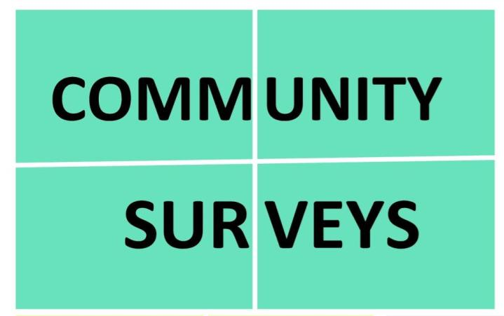 Engagement Strategies - Community Surveys