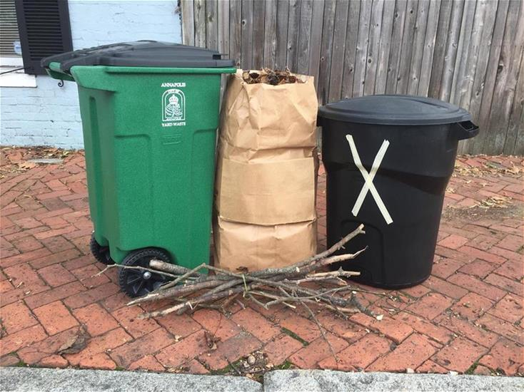 Yard Waste Set Out