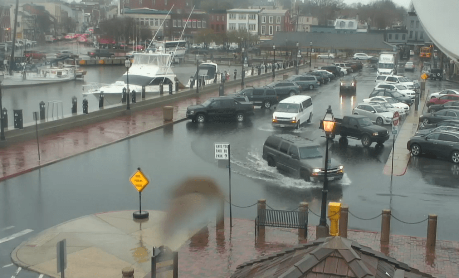 Flooding at City Dock