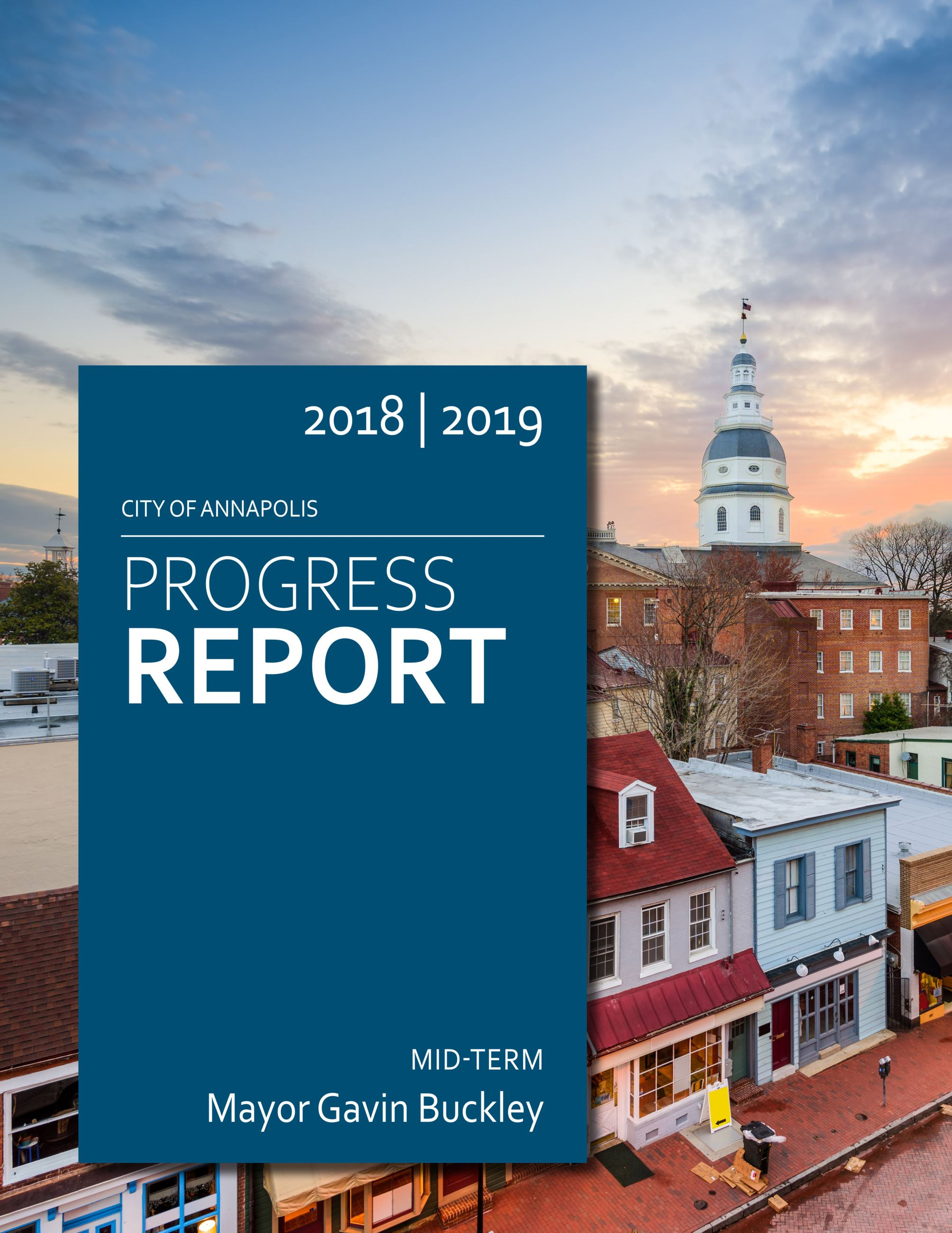 2019 Progress Report-COVER